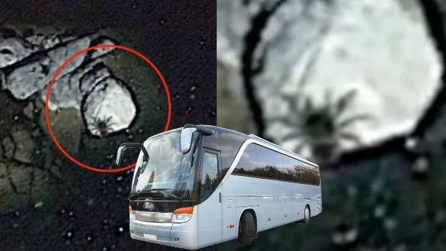 ¿Hallaron en México una araña del tamaño de un autobús? [VIDEO]