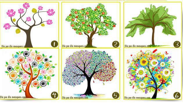 ¿Qué dice un árbol sobre tu personalidad? Entérate aquí