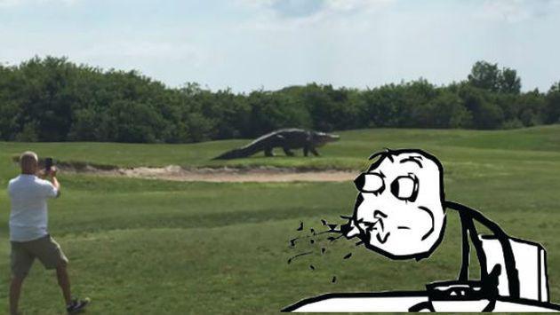 ¡Un cocodrilo gigante apareció en un campo de golf y no vas a creer lo que pasó! [VIDEO]