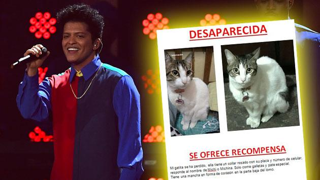 ¡Dan una entrada para el concierto de Bruno Mars en Lima para quien encuentre a esta gata!