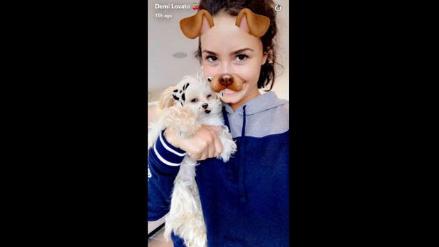 """Demi Lovato mostró en Snapchat  a su """"nuevo bebé"""""""