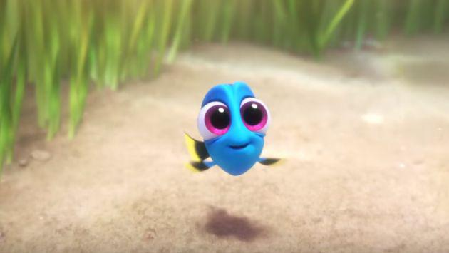 ¡Este video viral de 'Dory' bebé hará que se te derrita el corazón de ternura!