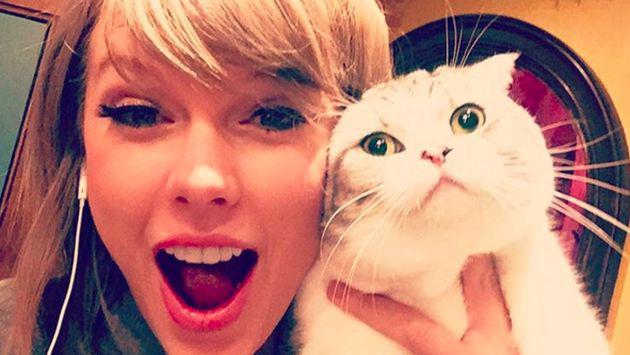 'Meredith', la gata de Taylor Swift, le trajo problemas a la cantante durante una fiesta [FOTO]