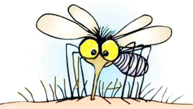 ¿Por qué los mosquitos pican a unas personas más que a otras?