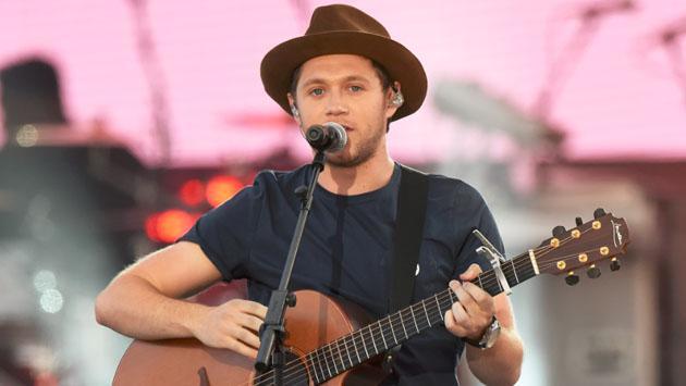 ¿Niall Horan dejará la música por cumplir este sueño?