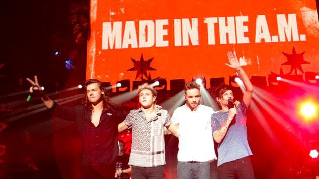 ¿One Direction vuelve como un trío? La sorprendente declaración de Niall Horan