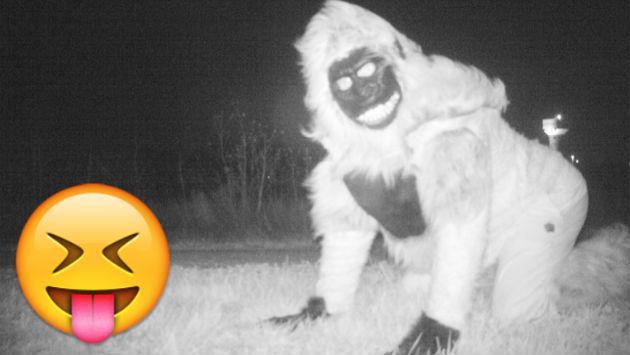 Colocaron cámara oculta para descubrir qué animal rondaba la zona y descubrieron esto [FOTOS]