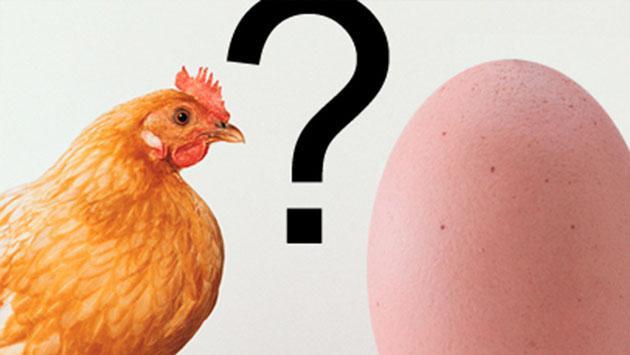 ¿Quién fue primero, el huevo o la gallina? Al fin hay una respuesta