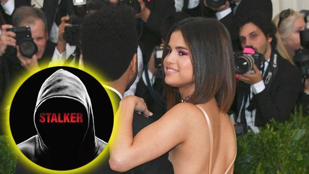 ¿Quién 'stalkea' tanto las fotos de Selena Gomez en Instagram?