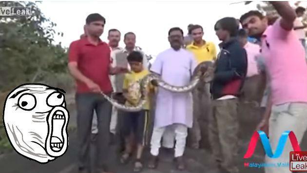 ¡Quiso tomarse un selfie con una serpiente, pero esta lo trolleó! [VIDEO]