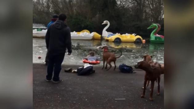 ¡Una joven rescató a mascota que cayó en lago helado! [VIDEO]