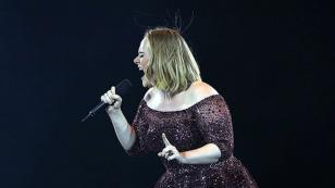 Adele defendió a sus fans de un guardia de seguridad [VIDEO]