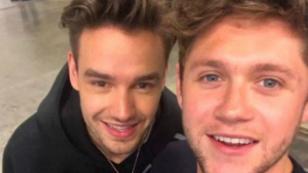 Liam Payne y Niall Horan se divirtieron luego de un evento en Indiana