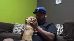 Luego de estar perdida, perrita se reencontró con su dueño [VIDEO]