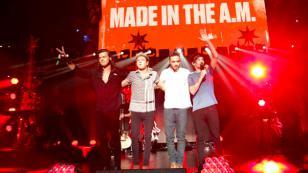 ¿Sabes cuántos millones vale cada uno de los miembros de One Direction?