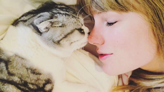 Así luce Taylor Swift en el primer trailer de 'Cats'