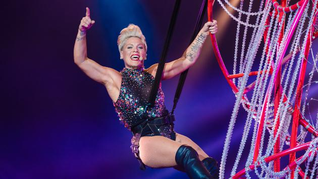 Pink recibirá el People's Champion Award en los 'E! People's Choice Awards 2019'